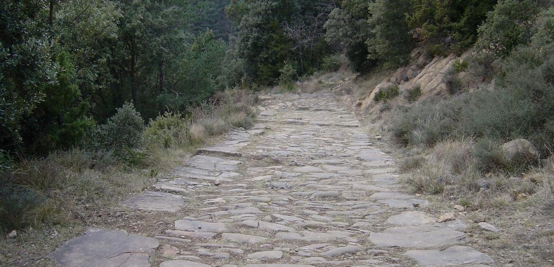 camins GALERIA